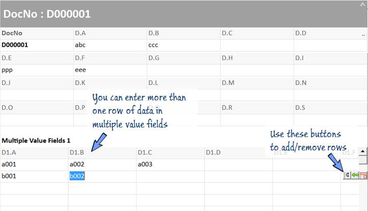 enter multi line of data in multiple value cells.