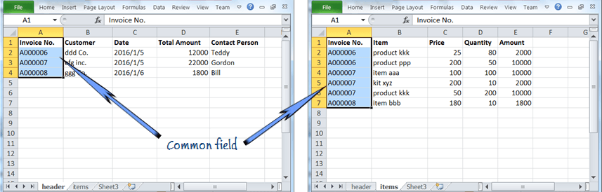 the invoice item records and header records share the common field of Invoice No.
