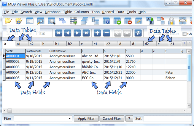 database file opened in MDB Viewer Plus